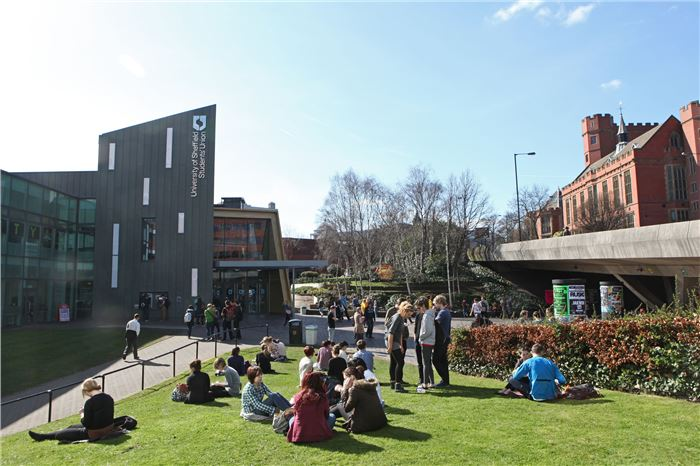kuliah di sheffield university