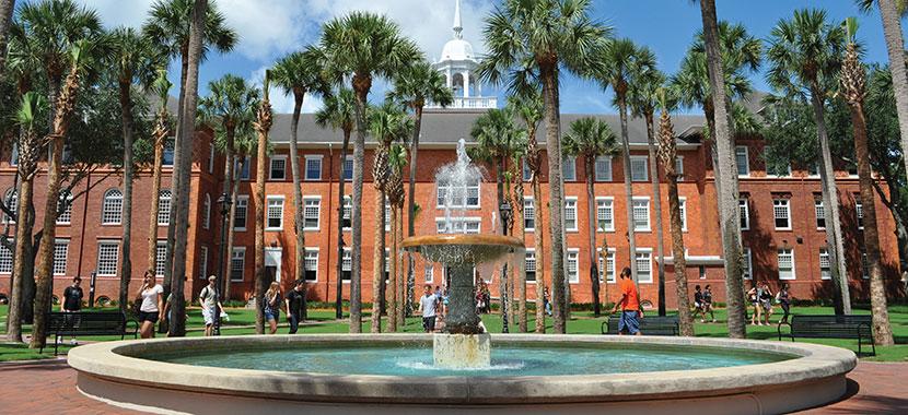 biaya kuliah di university of south florida