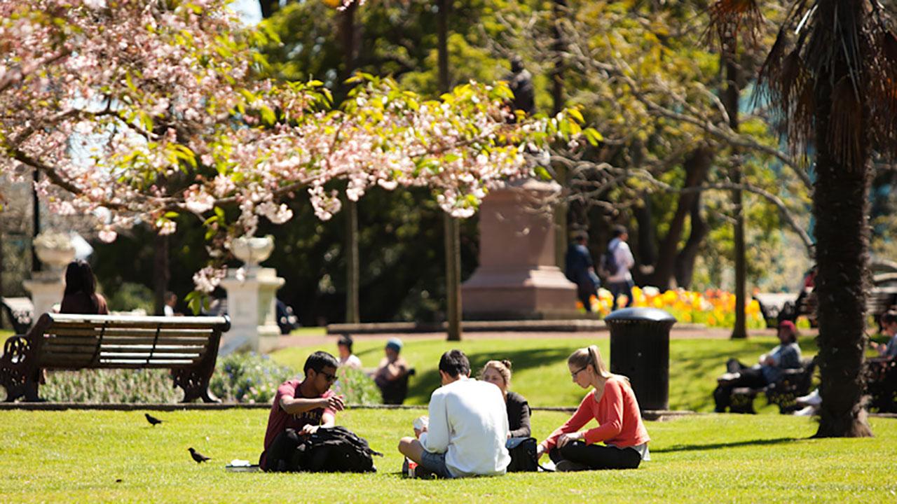 biaya kuliah di university of auckland terbaru
