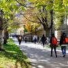 konsultan kuliah di university of toronto